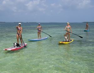 Paddleboarding Key West